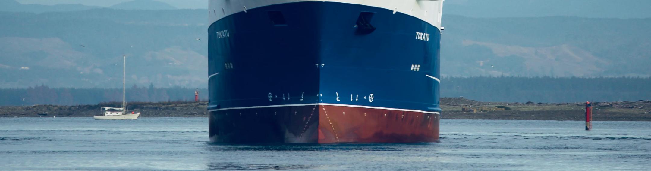 uw advocaat voor transport, haven en handel